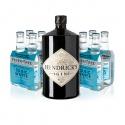 Hendrick´S Gin 1 l 41,4% Akcia s 8x FT Tonikom ZDARMA